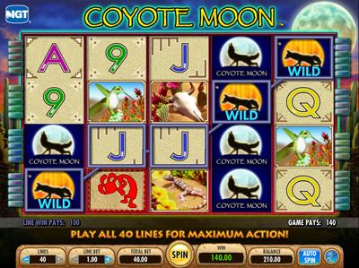 coyote moon 1